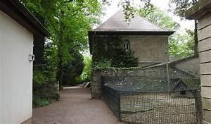 Tierpark Dessau Preise : fototouren tierparks zoos wildgehege tierpark dessau ~ Yasmunasinghe.com Haus und Dekorationen