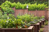 excellent edible garden design A Day Spent in the Garden Learning About Different ...