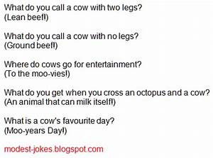 Image Gallery most hilarious jokes ever