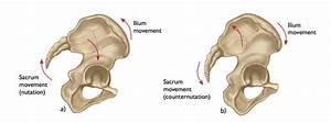 The Anatomy Of The Si Joint And Its Relationship To Yoga