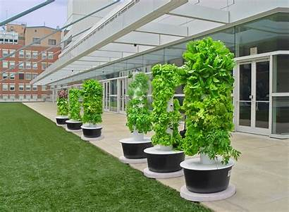 Hydroponic Towers Window Ask Extension Farmimg