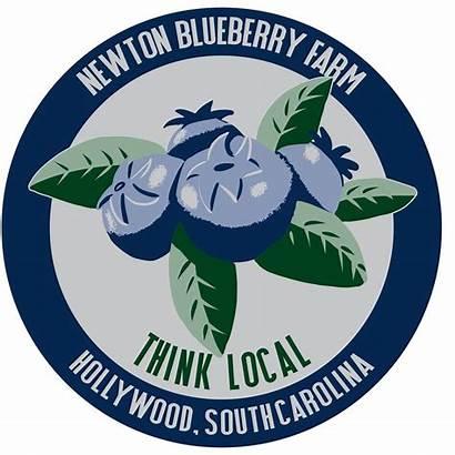 Blueberry Farm Newton Blueberries Sc Corner Agriculture