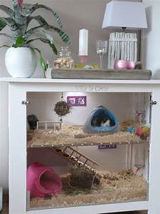 Hamster house? | Hamster | Pinterest