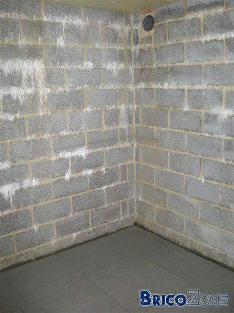 Mur Cave A Vin 3842 by Peindre Murs Caves Et Garage En Blocs B 233 Tons