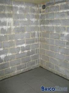 Vmc Pour Cave : vmc pour cave humide cheap cuest plutt ces niveaux quuil ~ Edinachiropracticcenter.com Idées de Décoration