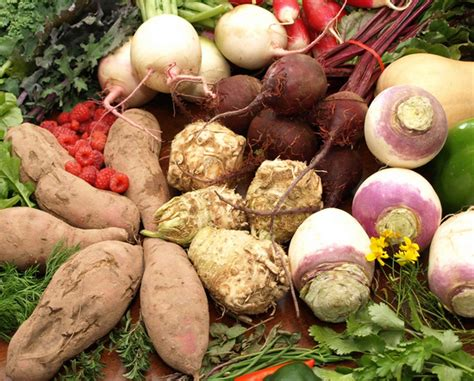 Root Vegetables For Natural Weight Loss  Natural Fitness Tips