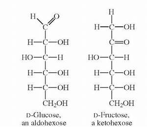 MONOSACCHARIDES Part 1 (Glycoconjugates and Carbohydrates)