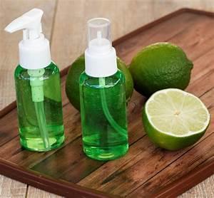 Parfum Maison Naturel : desodorisant maison naturel ventana blog ~ Farleysfitness.com Idées de Décoration