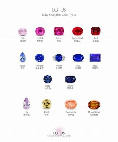 Types Sapphire Ruby Lotus Sapphires Gemology Gemstones