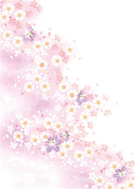 white flower  pink background