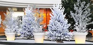 Cuisine Ide Dcoration Exterieur Pour Noel Decoration