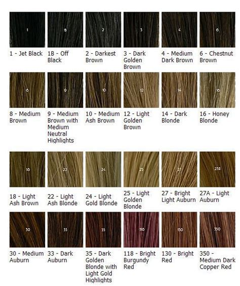 ash hair color chart image detail for light ash brown hair color chart hair