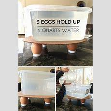 Eggshell Strength Experiment How Strong Is An Eggshell?