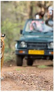 Top 10 Wildlife Sanctuaries In India - Travelsite India Blog