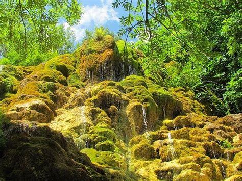 jardin des fontaines petrifiantes le jardin des fontaines p 233 trifiantes la s 244 ne is 232 re royans rh 244 ne alpes