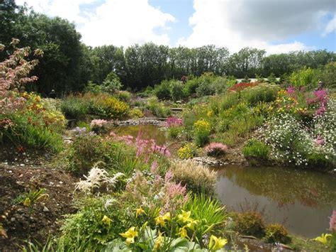 wildside garden 231 best images about english gardens on pinterest