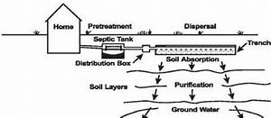 Illustration Of Typical Septic System With Field Drain
