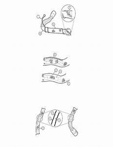 Lincoln Workshop Manuals  U0026gt  Mkz Awd V6