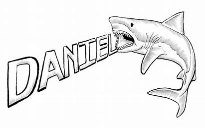 Shark Outline Drawing Clipart Sharks Drawings Coloring