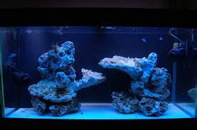 Saltwater Aquascaping Ideas by Image Result For Aquascaping 90 Gallon Reef Tank