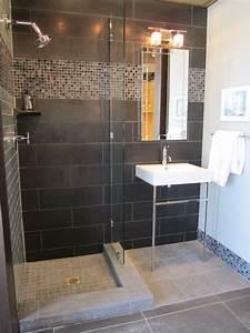 Black ceramic tile contemporary bathroom sherwin for Black bathroom shower ceramic tile