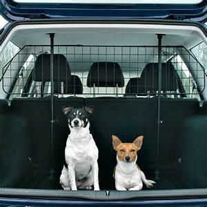 Voiture Pour Chien : grille de s paration tour voiture pour chien accessoires et quipements pour auto sur ~ Medecine-chirurgie-esthetiques.com Avis de Voitures