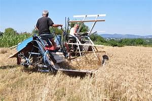 Materiel Agricole Ancien : vieux materiel agricole occasion particulier tracteur routier occasion renault ~ Medecine-chirurgie-esthetiques.com Avis de Voitures