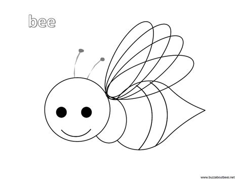 bee coloring page bee coloring pages educational activity sheets and