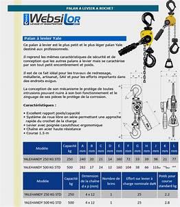 Palan A Chaine 500 Kg : palan yalehandy 250 kg ~ Melissatoandfro.com Idées de Décoration