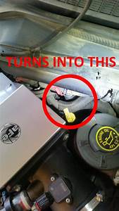 Leak At The Top Rear Driver Side Of Engine  Coolant Or