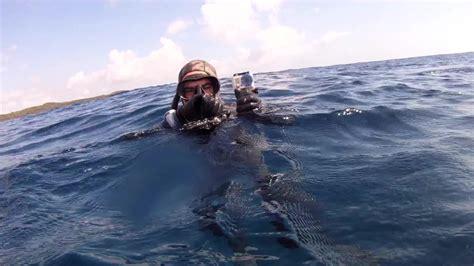 spear shark attacks fisherman grouper jv 2806 save