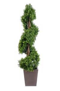 artificial topiary bay trees boxwood topiary tea tree and polyvore