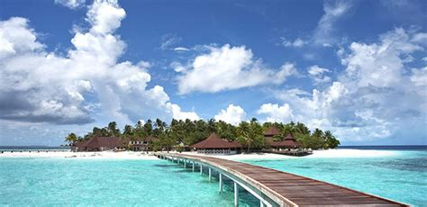 wisata pulau seribu abigail rental
