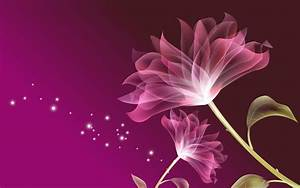 1080p – Flower HD Wallpapers for Laptop, Android, Tablets ...