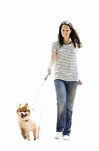 woman dog | photoshop | Pinterest | Dog, Photoshop and People