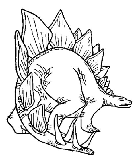 stegosaurus coloring page stegosaurus coloring pages coloring home