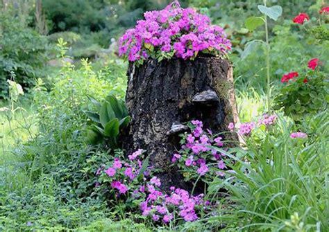 tree stump planters tree stumps turned into beautiful flower planters