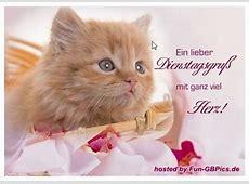 Dienstags Grüße GB Eintrag Facebook BilderGB Bilder
