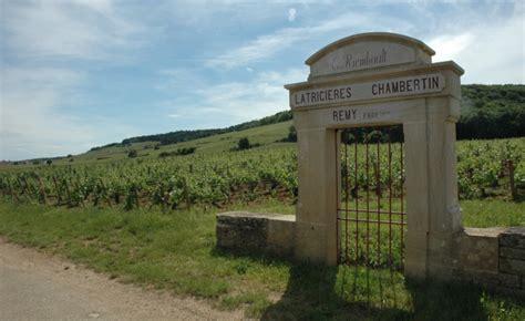 bureau les grands crus le vignoble côte de nuits bourgogne régions vins