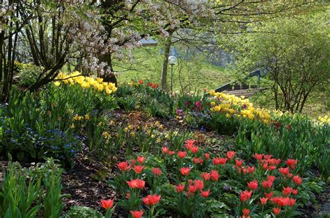 Virtueller Botanischer Garten Höxter