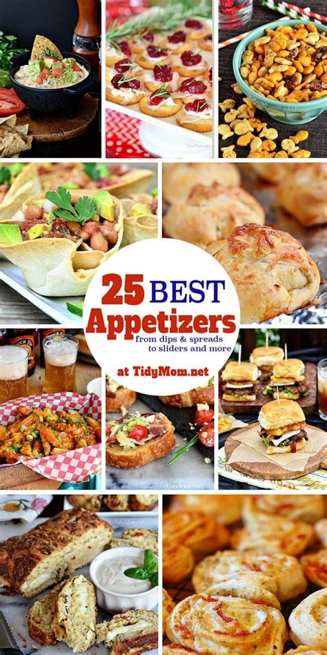 amazing appetizer recipes tidymom 174