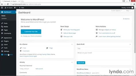 Using The Wordpress Admin Panel
