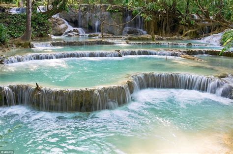 Business This Natural Swimming Pool