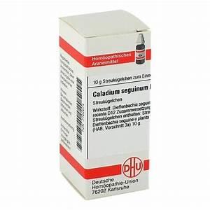 Caladium Knollen Kaufen : caladium seguinum d 12 globuli 10 gramm n1 online ~ Lizthompson.info Haus und Dekorationen