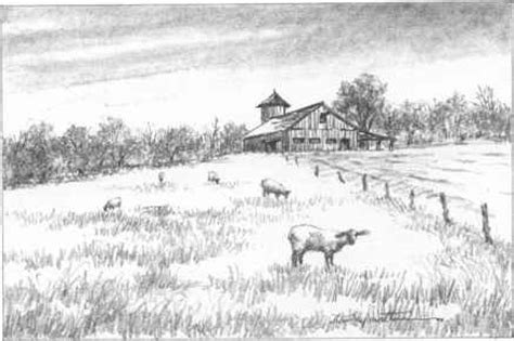 drawn lawn landscape pencil   color drawn lawn