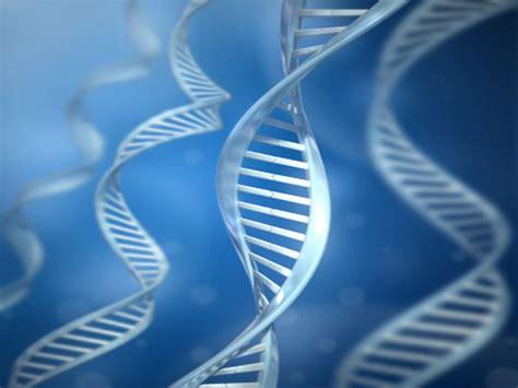 geneticists repair mutation  human embryo