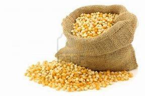 Resultado de imagen de sacos de maiz imagen