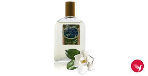printemps si鑒e social eau de cologne magnolia bouchara parfum un parfum pour femme