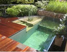 Small Swimming Pool Design Modern Backyard Design Small Backyard Modern Swimming Pool Design Pool Designs Modern Swimming Pictures To Rock Water And Plants Combine Naturally To Create A Beautiful Back Natural Pool Designs Rock Pool Designs Swimming Pool Designs