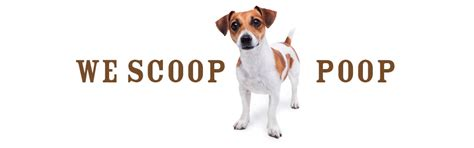 pooper scooper service cost big